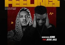 Budicious A-One Feelings ft Jesse Jagz Download Mp3