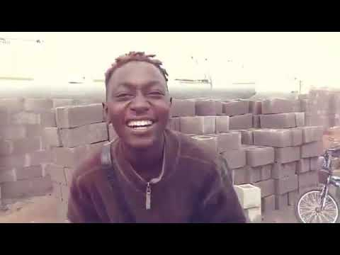 Sarkin Arewa Never Stop freestyle viral  video Download Mp4
