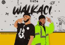 NT4 Walkaci mp3 download