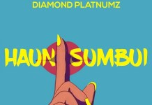Diamond Platnumz Haunisumbui mp3 download