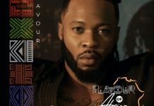 Flavour Flavour of Africa EP Album download