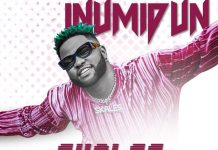 Skales Inumidun mp3 download