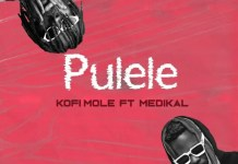 Kofi Mole Pulele Ft Medikal mp3 download