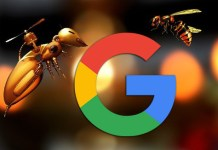 Google Search Console Notification For Google Will Start Crawling Over HTTP/2