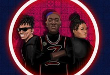 Zinoleesky ft Mayorkun & Busiswa Kilofeshe Remix mp3 download