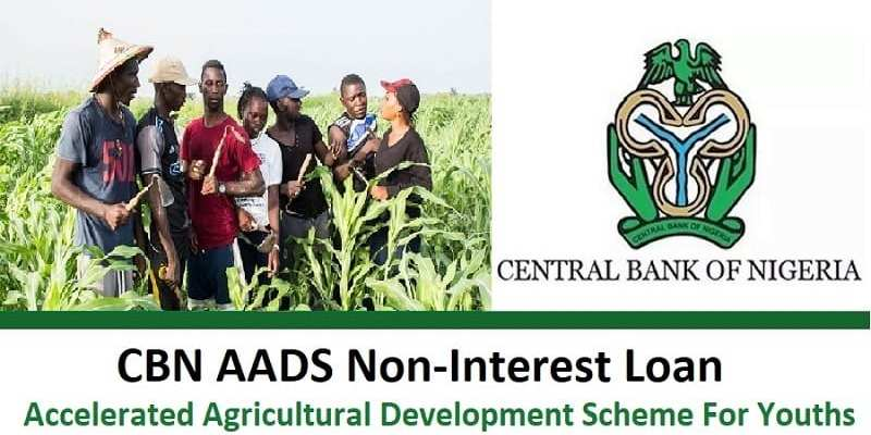 Accelerated Agricultural Development Scheme - AADS Loan