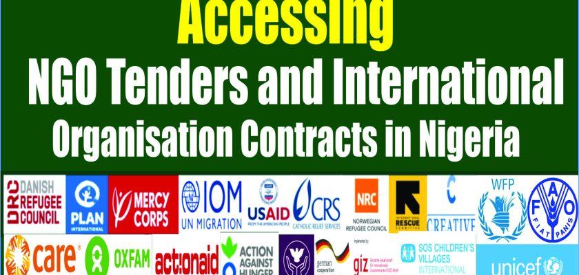 Ngo Tenders In Nigeria