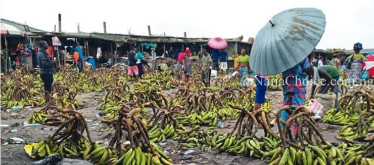 How Fruits Ripened With Carbide Kill Nigerians