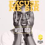 "DOWNLOAD MP3: Wole DSB – ""Excuse Me Sir"""