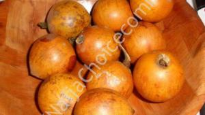 "Did You Know? African Star Apple ""Agbalumo"" Could Cause Male Infertility – Reports"