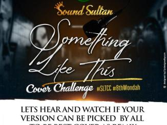 DOWNLOAD MP3: Sound Sultan – Something Like This