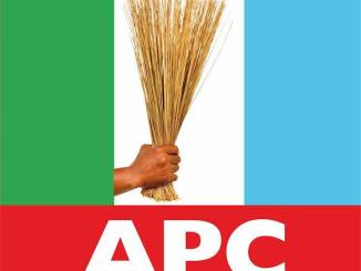 APC Crisis: Governors Divided Over Next Party Chair