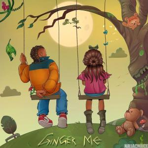 DOWNLOAD MP3: Rema – Ginger Me