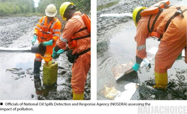 'If COVID-19 Meets Oil Pollution, We Are Finished'