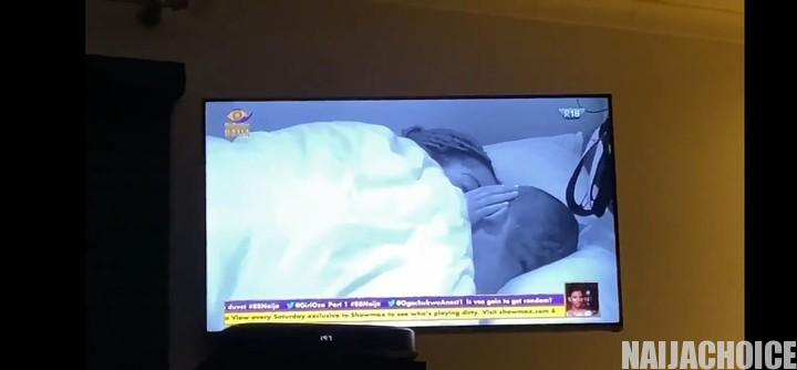 #BBNaija: Laycon Interrupts Lilo And Eric While Kissing In Bed