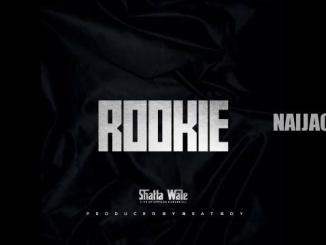 DOWNLOAD MP3: Shatta wale – Rookie