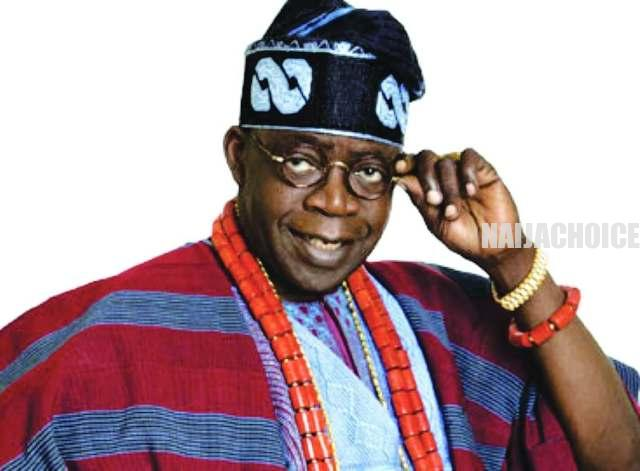 'The Blood That Runs In My Veins Is Same That Runs In Every Nigerian' - Tinubu