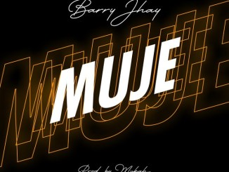 DOWNLOAD MP3: Barry Jhay – Muje