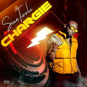 DOWNLOAD MP3: Sean Tizzle – Chargie