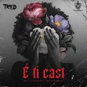 DOWNLOAD MP3: TROD – E Ti Cast