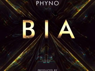 DOWNLOAD MP3: Phyno – BIA