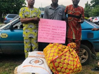 NURTW Chairman, 3 Others Arrested For Drug Trafficking In Ondo, Benue (Photo)