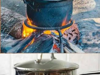 Food Cooked With Firewood Vs Gas: Which One Tastes Better? (Photo)Food Cooked With Firewood Vs Gas: Which One Tastes Better? (Photo)