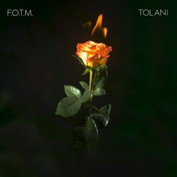 DOWNLOAD MP3: Tolani – Fire On The Mountain