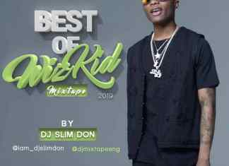 Dj SlimDon - Best of Wizkid Mix 2019