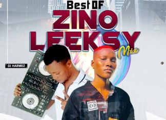 DJ Harmez - Best of Zinoleesky latest mix 2020