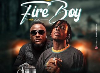 DJ Baddo - Best Of Fireboy Mix 2020