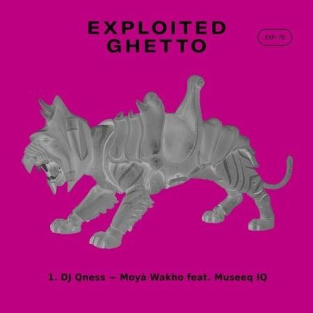 DJ Qness – Moyà Wakho Ft. Museeq IQ mp3 download