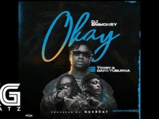 DJ Enimoney – Okay Instrumental Ft. Dapo Tuburna & Terry G