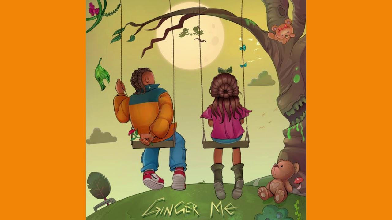 Rema – Ginger Me (Instrumental) mp3 download