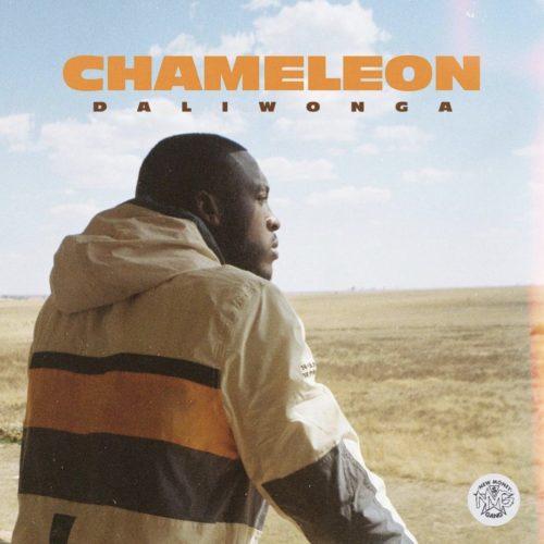 Daliwonga – Crash Into Me Ft. Sha Sha mp3 download