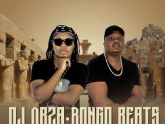 ALBUM: DJ Obza & Bongo Beats – Memeza