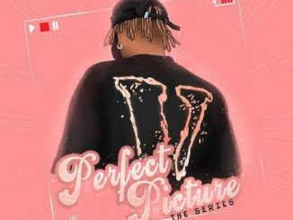 [EP] Dremo – Perfect Picture (The Series)