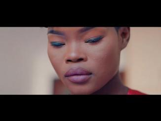 VIDEO: Prince Bulo Ft. Q Twins – Uthando