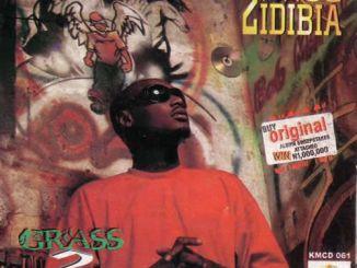 2Face Idibia – My Love Ft. V.I.P