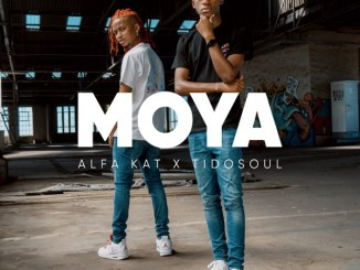 Alfa Kat & TidoSoul – Halakasha Ft. Banaba Des