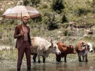 Zulu Mkhathini – Muhle