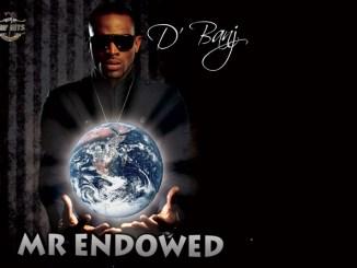 D'Banj – Mr Endowed + Remix Ft. Snoop Dogg