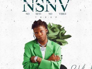 Seyi Vibez – Big Vibe