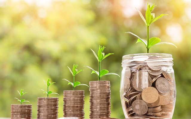 invest money to grow bigger