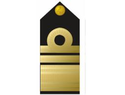 Nigerian Navy vice-admiral badge/insignia