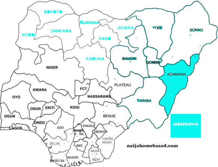 Map of Nigeria showing Adamawa State landmass in blue