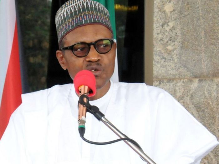 Image result for I won't let Nigeria down, says Buhari