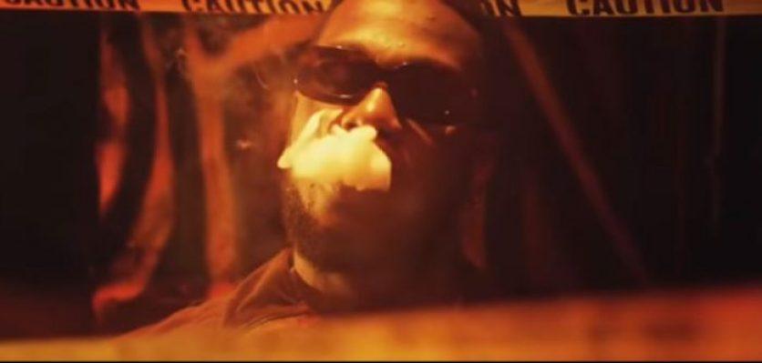 burna 700x334 - [Video] Burna Boy – Rock Your Body