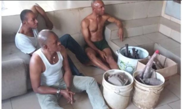herb - EFCC Arrests Native Doctor, 3 Other Fraudsters (Photos)