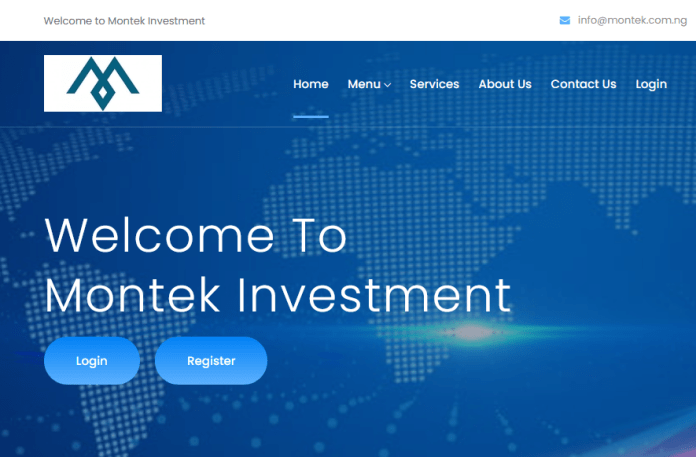 Montek investment review